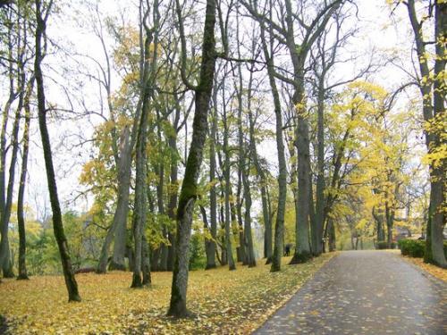 Herbststimmung (100_0442.JPG) wird geladen. Eindrucksvolle Fotos aus Lettland erwarten Sie.