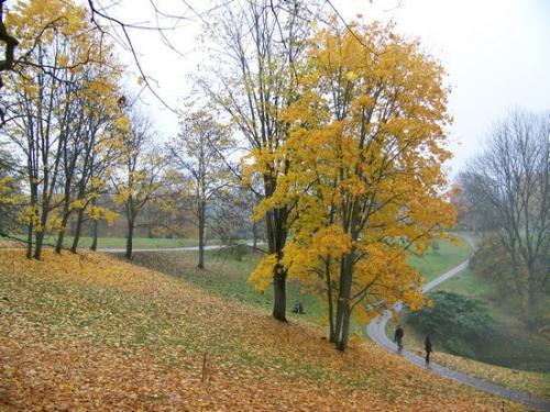 Herbststimmung (100_0443.JPG) wird geladen. Eindrucksvolle Fotos aus Lettland erwarten Sie.