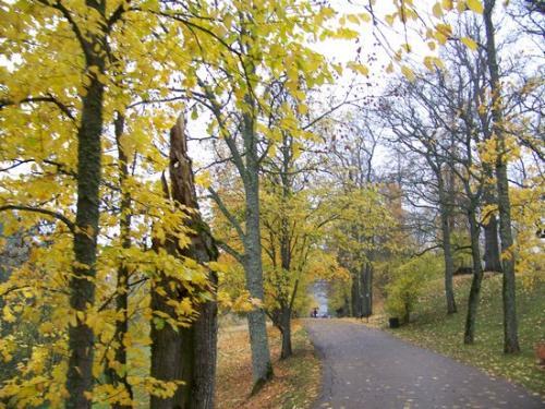 Herbststimmung (100_0447.JPG) wird geladen. Eindrucksvolle Fotos aus Lettland erwarten Sie.