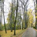 Herbststimmung (100_0442.JPG) Riga Lettland Baltikum