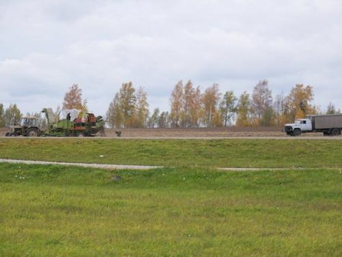 Herbstwald (100_0104.JPG) wird geladen. Eindrucksvolle Fotos aus Lettland erwarten Sie.