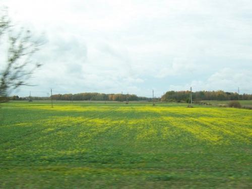 Horizonte (100_0093.JPG) wird geladen. Eindrucksvolle Fotos aus Lettland erwarten Sie.