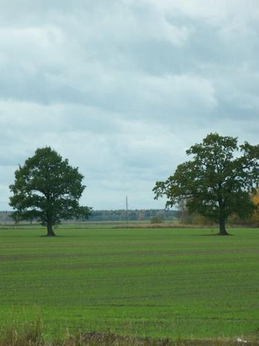 Horizonte (100_0096.JPG) wird geladen. Eindrucksvolle Fotos aus Lettland erwarten Sie.