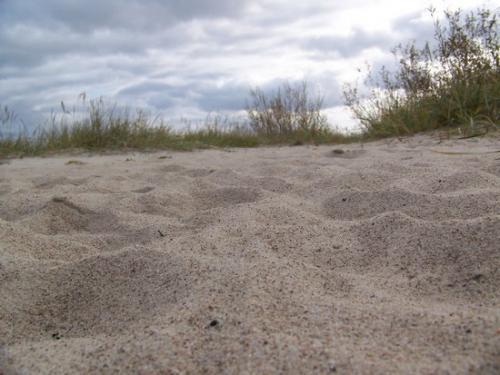 Ostseekueste (100_0644.JPG) wird geladen. Eindrucksvolle Fotos aus Lettland erwarten Sie.
