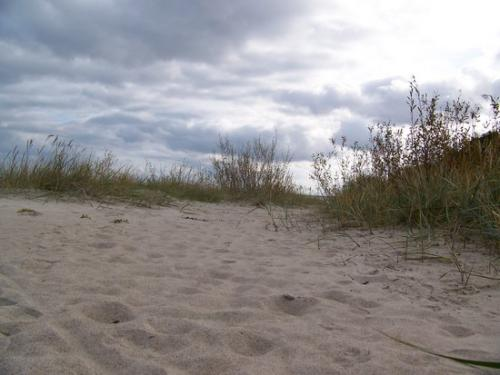 Ostseekueste (100_0645.JPG) wird geladen. Eindrucksvolle Fotos aus Lettland erwarten Sie.