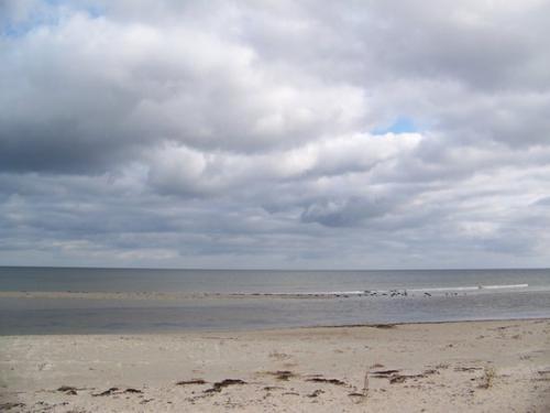Ostseekueste (100_0647.JPG) wird geladen. Eindrucksvolle Fotos aus Lettland erwarten Sie.