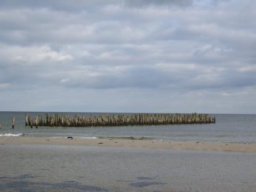 Ostseekueste (100_0649.JPG) wird geladen. Eindrucksvolle Fotos aus Lettland erwarten Sie.