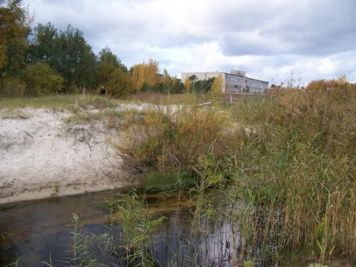 Ostseekueste (100_0684.JPG) wird geladen. Eindrucksvolle Fotos aus Lettland erwarten Sie.