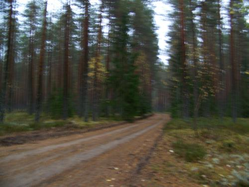 Schotterpisten (100_0570.JPG) wird geladen. Eindrucksvolle Fotos aus Lettland erwarten Sie.