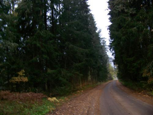 Schotterpisten (100_0576.JPG) wird geladen. Eindrucksvolle Fotos aus Lettland erwarten Sie.