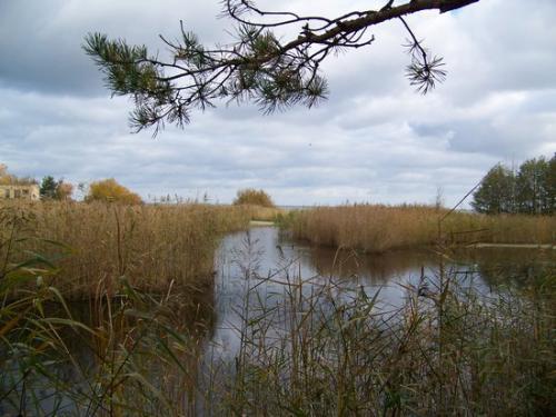 Strandwald (100_0640.JPG) wird geladen. Eindrucksvolle Fotos aus Lettland erwarten Sie.