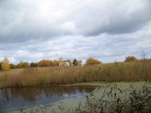 Strandwald (100_0641.JPG) wird geladen. Eindrucksvolle Fotos aus Lettland erwarten Sie.