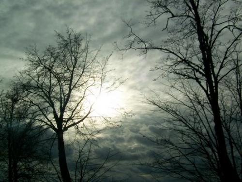 Wolken (100_0077.JPG) wird geladen. Eindrucksvolle Fotos aus Lettland erwarten Sie.